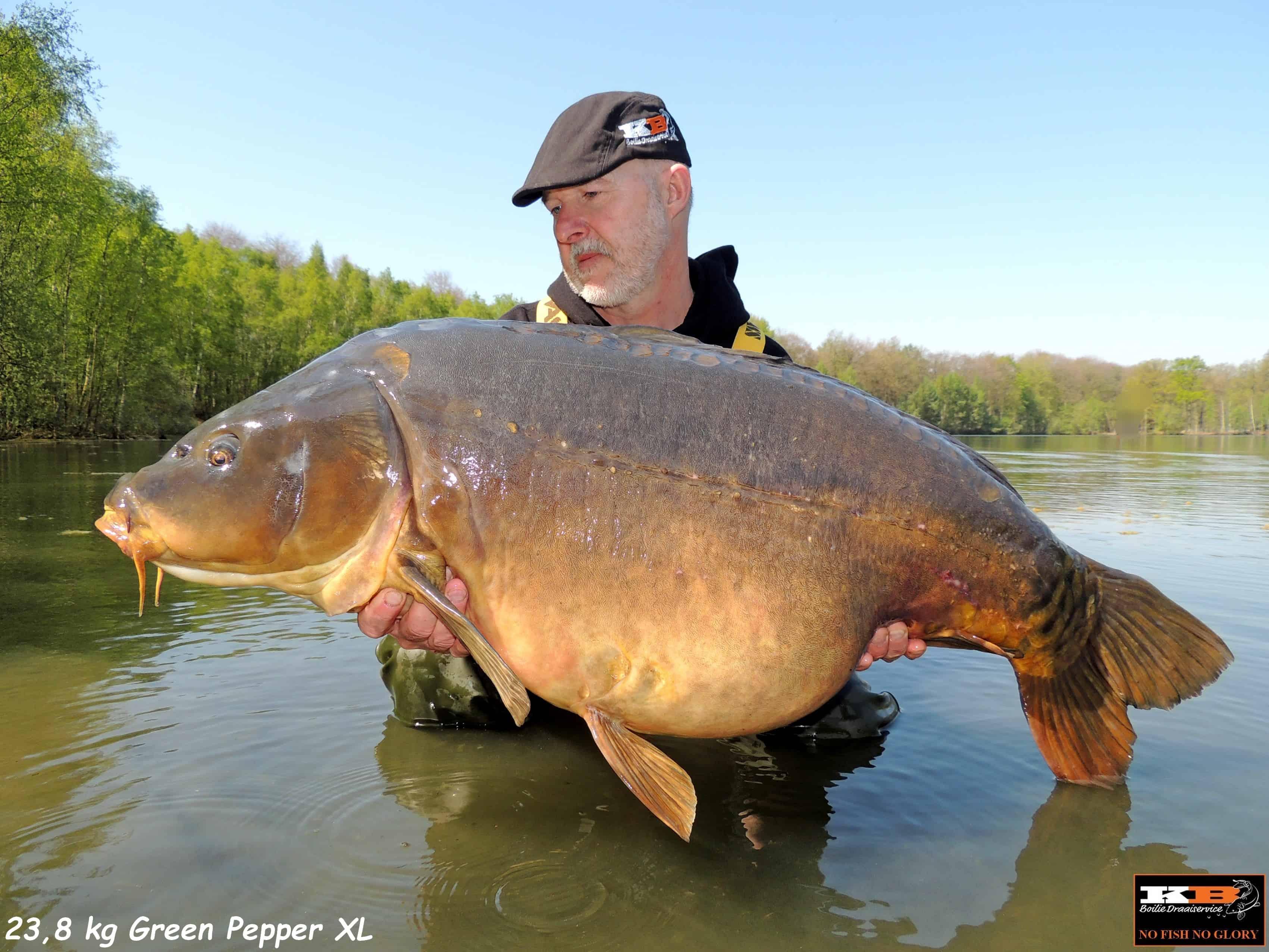 Simon Spiegel 23,8 kg