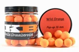 Pop ups Wild Orange